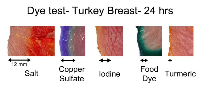 turkey breast dye test