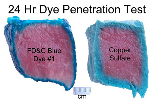 food coloring and copper sulfate dye penetration pork