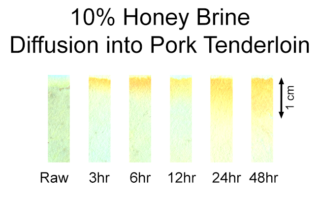 10% honey brine diffusion into pork tenderloin vs time