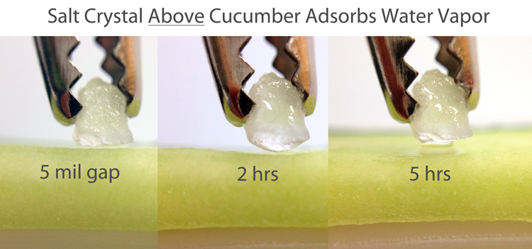 salt above cucumber slice