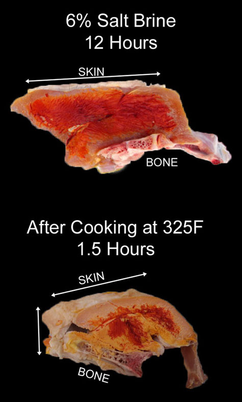 salt diffusion in turkey breast with skin